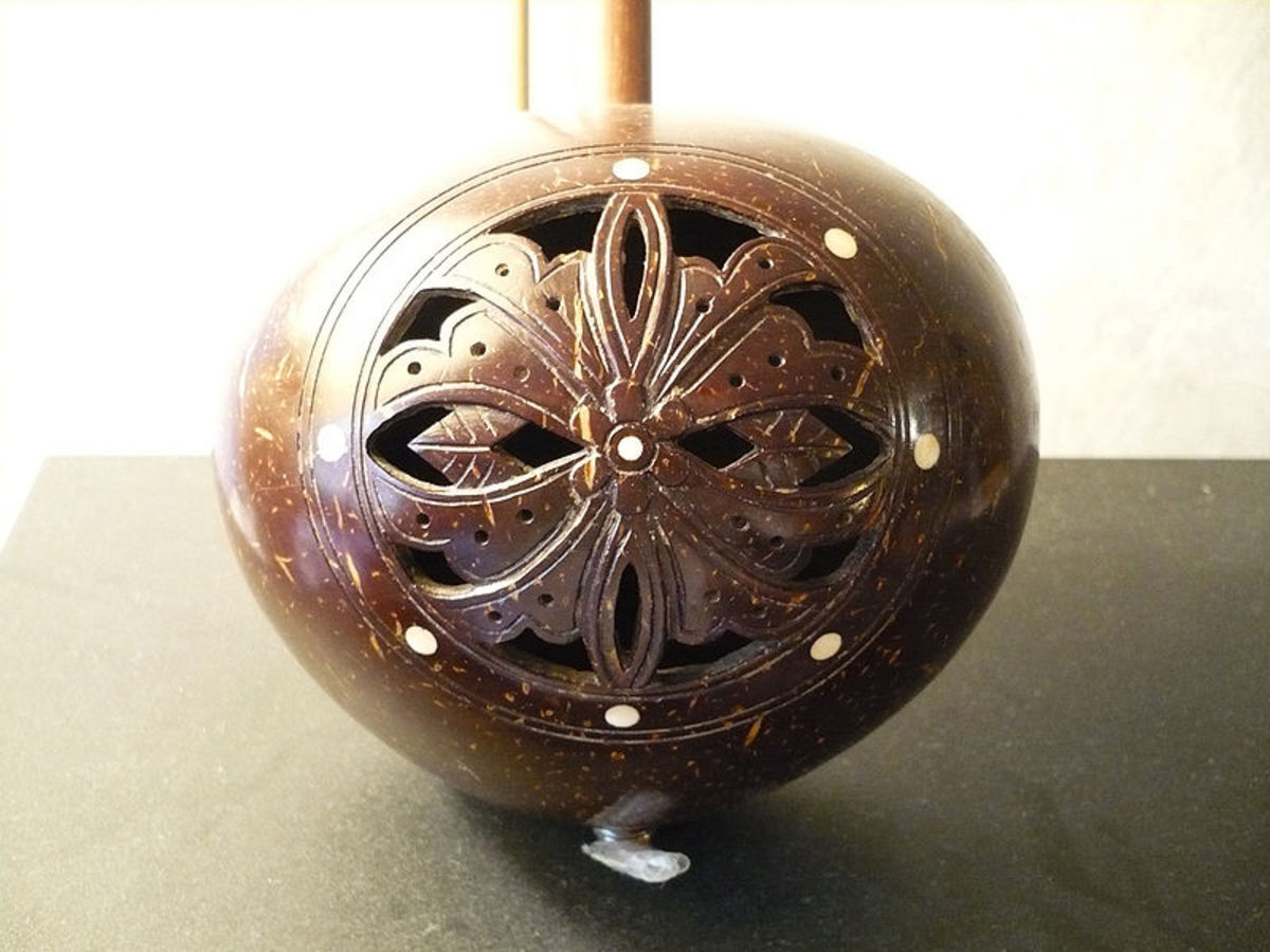chinese yehu with coconut shell body