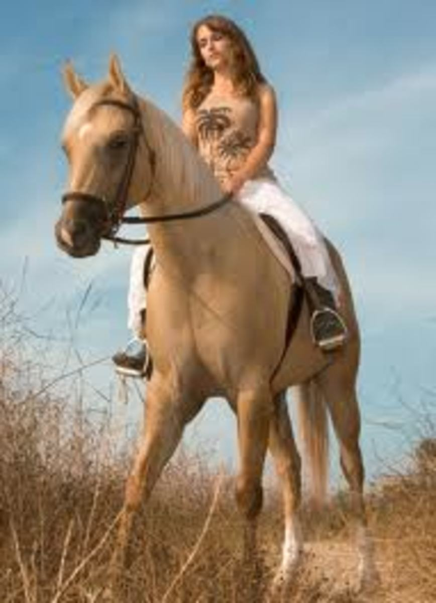 Beautiful - both the girl and the Palomino