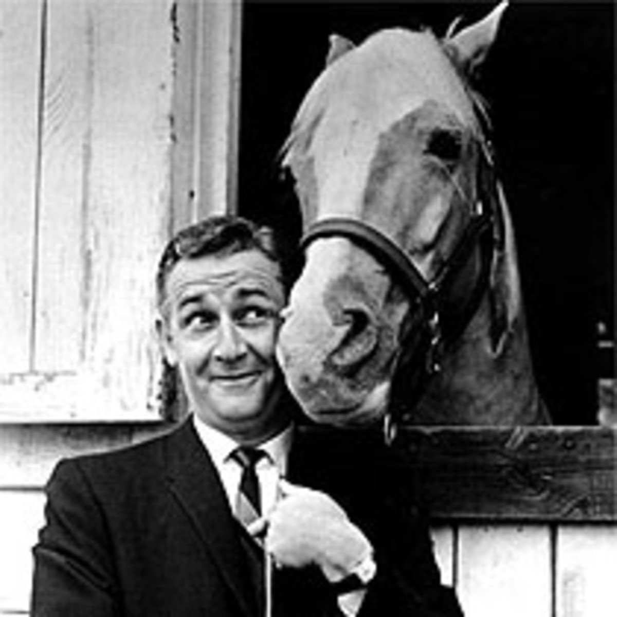 Interview with Mr. Ed - Horse Facts and Horse Trivia