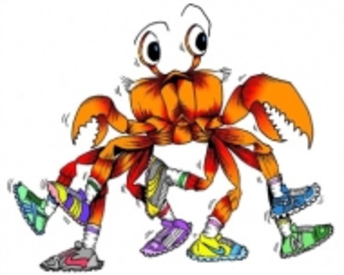 Camano Island Crab Dash