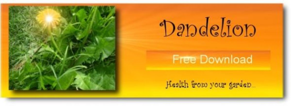 Dandelion Ebook, FREE Download