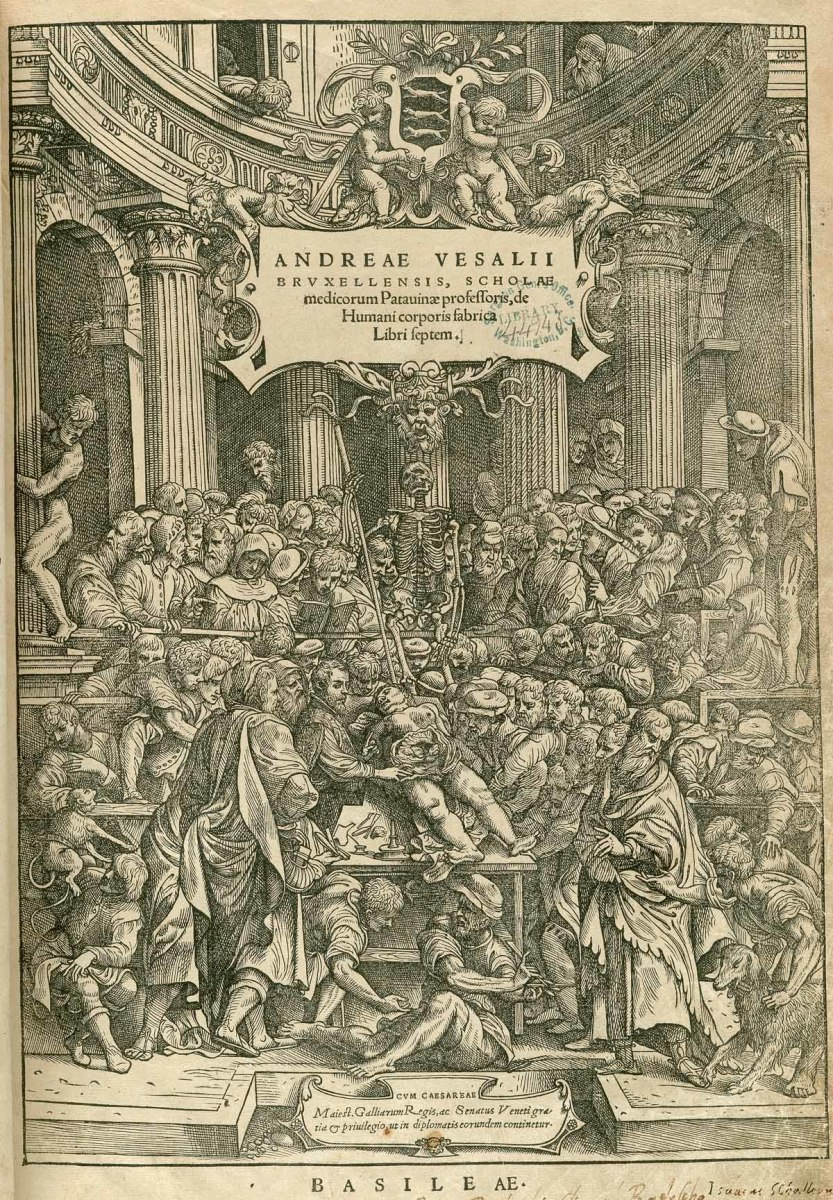 Vesalius conducting a public dissection as captured in the frontispiece of his book.
