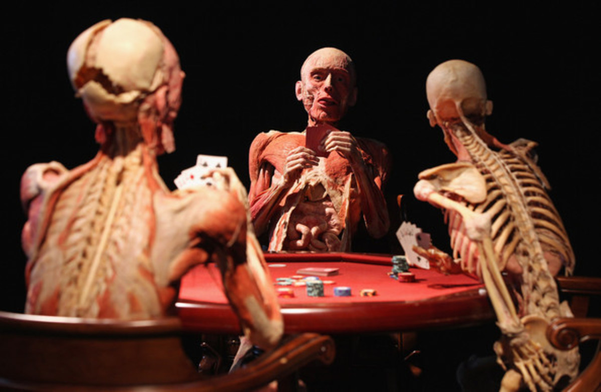 Gunther Van Hagens 'Body Worlds'