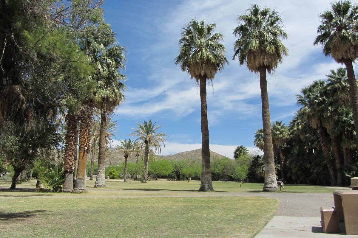 Agua Caliente front of park