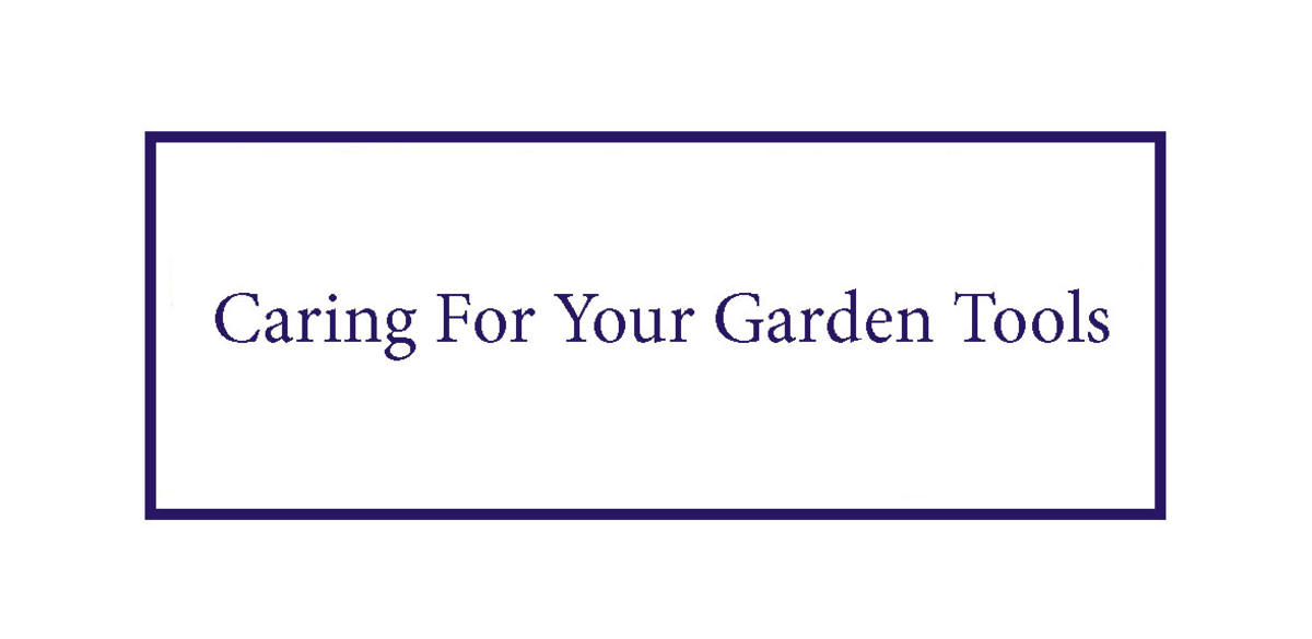 the-most-useful-garden-tools-in-the-shed