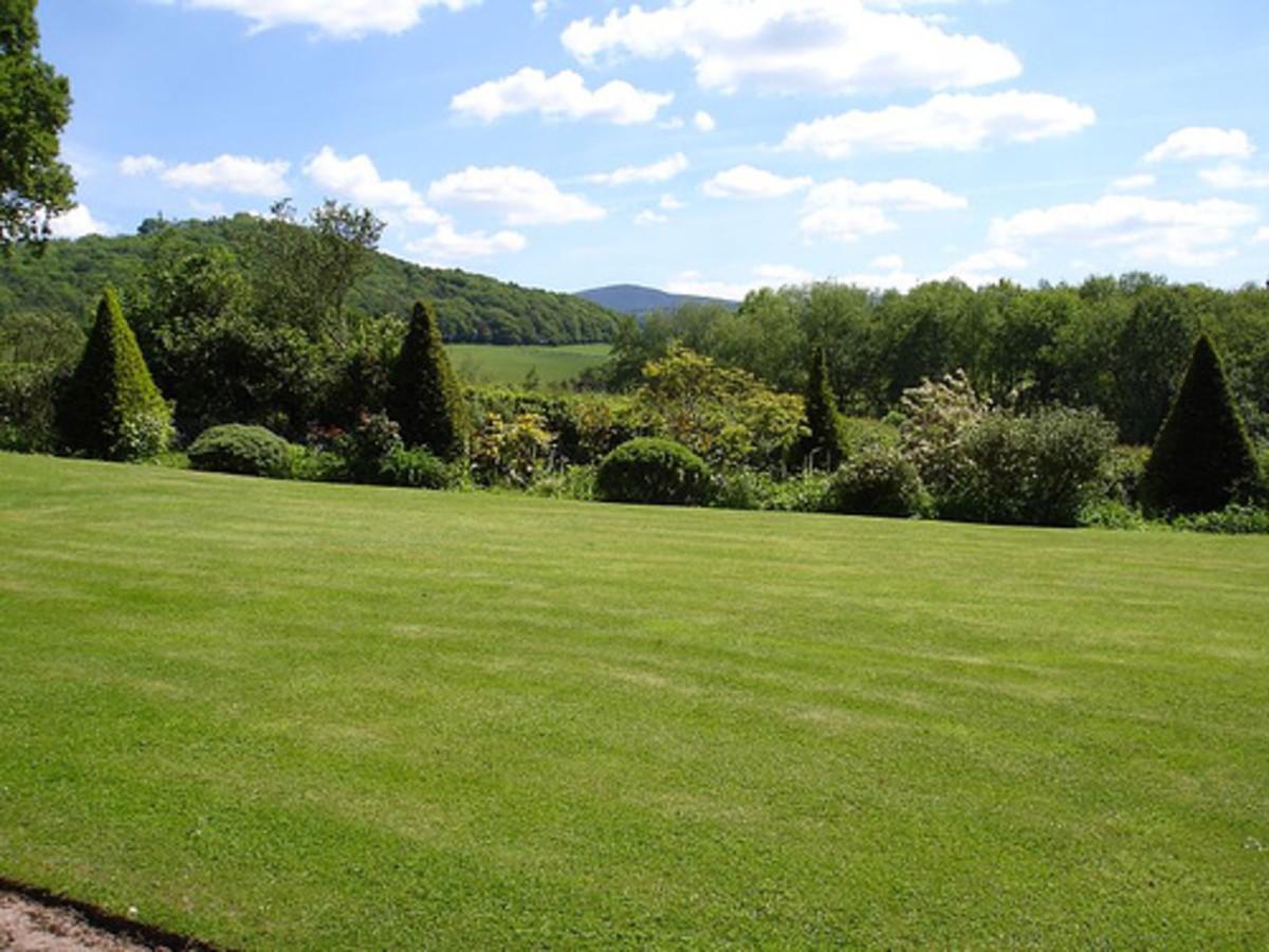 Good lawn care