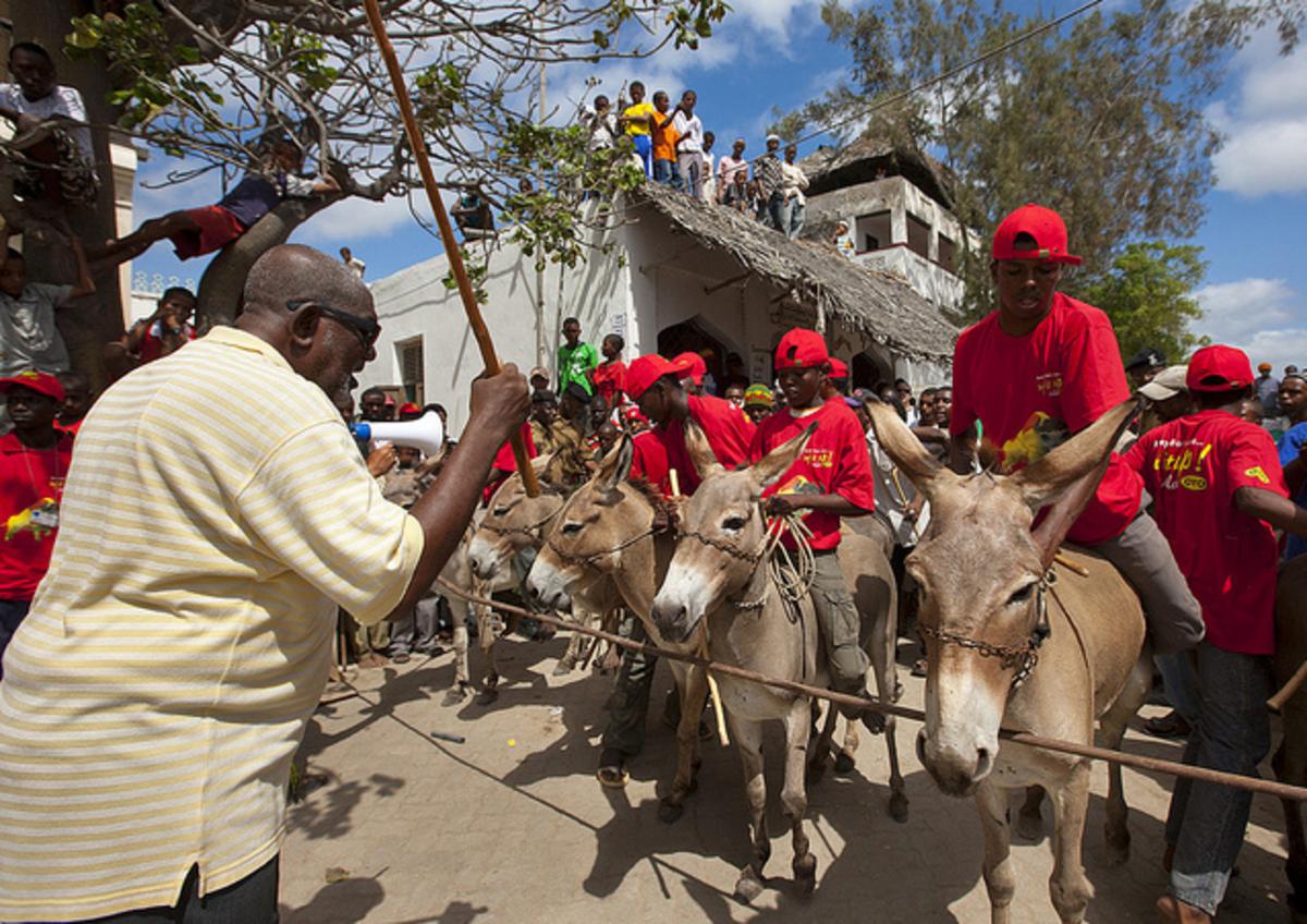 Lamu Cultural Festival - donkey race