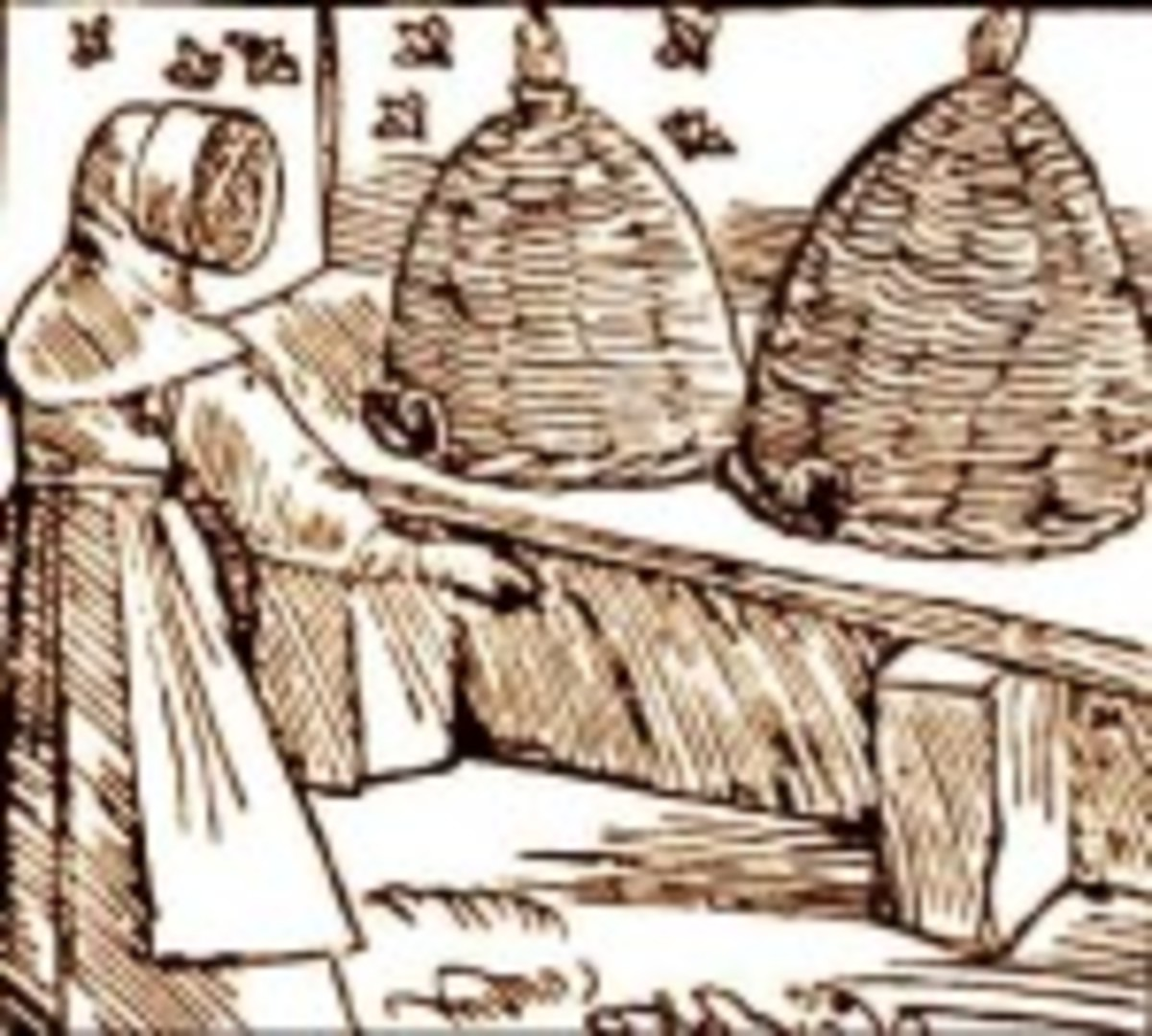 Medieval Bee Hives