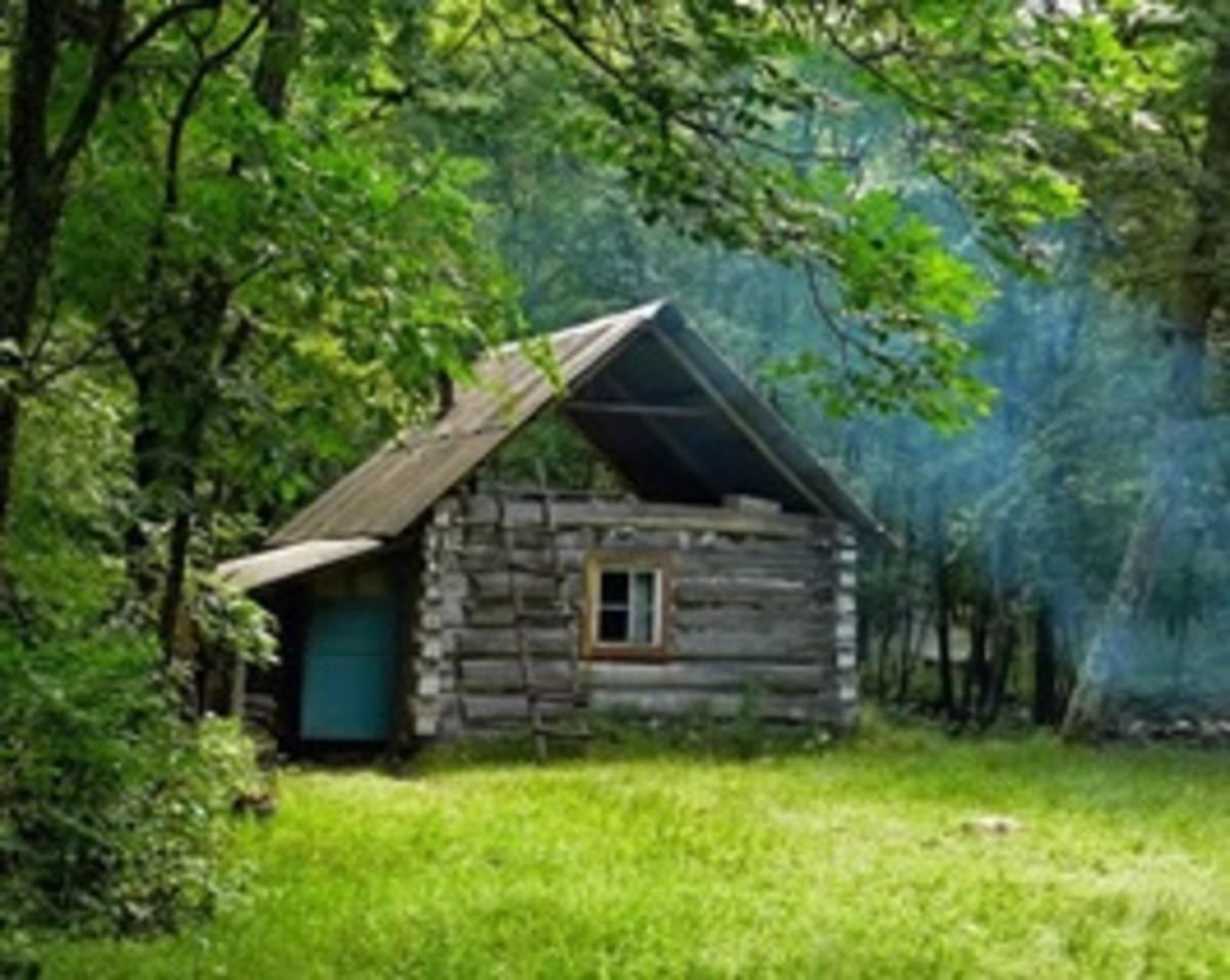 My dream home. A hut in the woods for me. A sober life, a frugal life; dreaming of the light in window