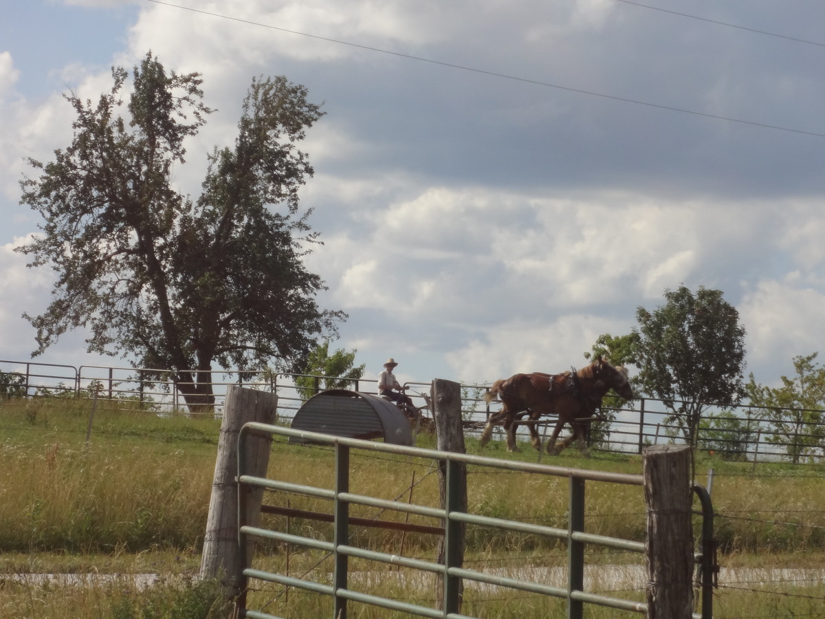 A Visit With the Old Order Amish, Bowling Green, Missouri