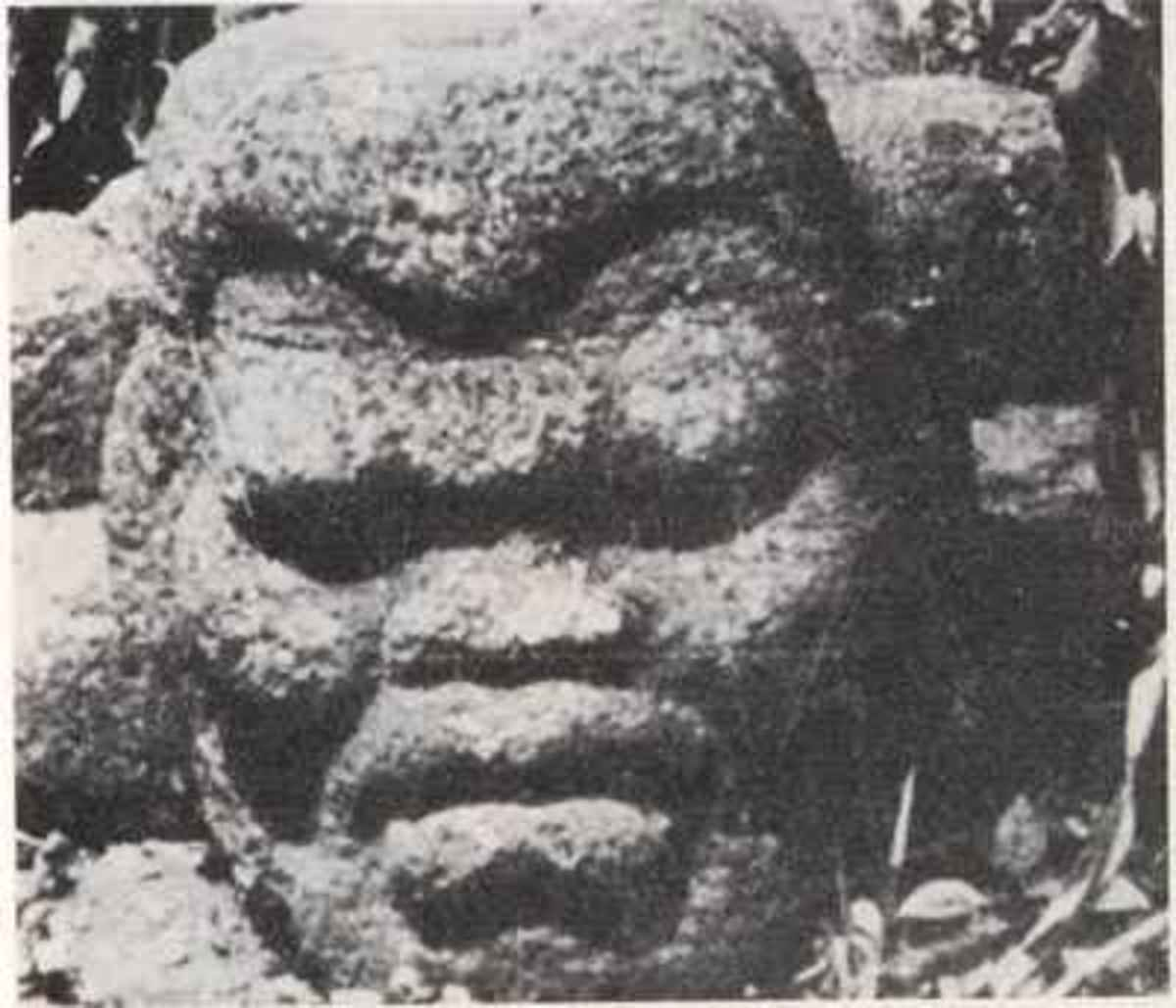 This particular head looks clearly African but also has mild stickler facial features including flattened facial features, drooping eyelids, and prominent lips with a very prominent lip groove