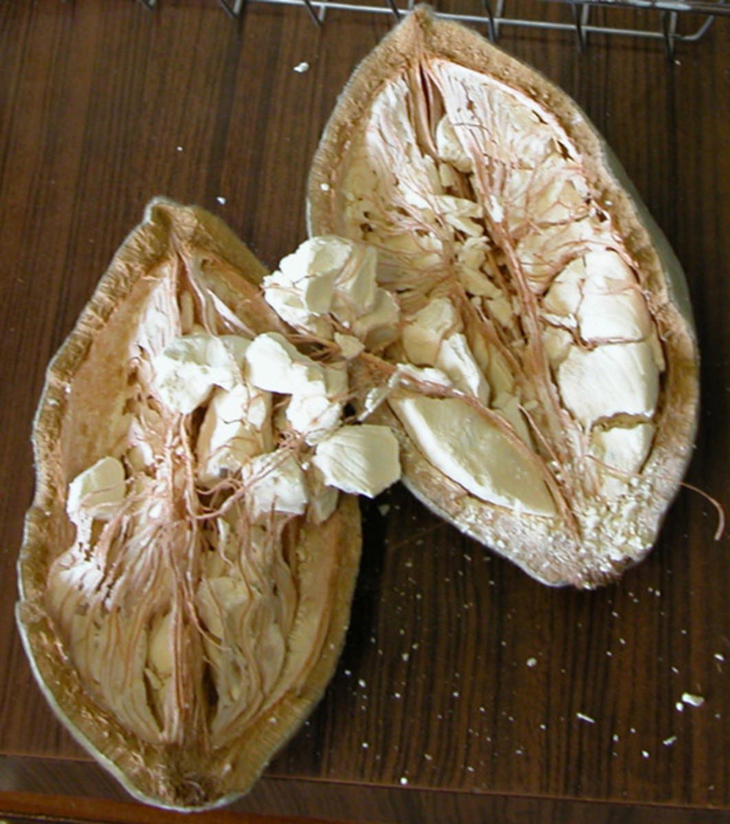 Fruit of the Baobab