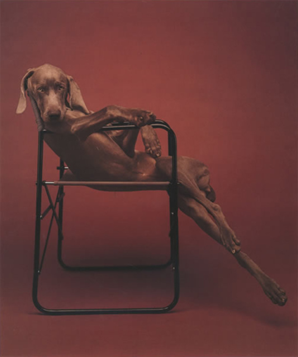 From the genius of William Wegman.
