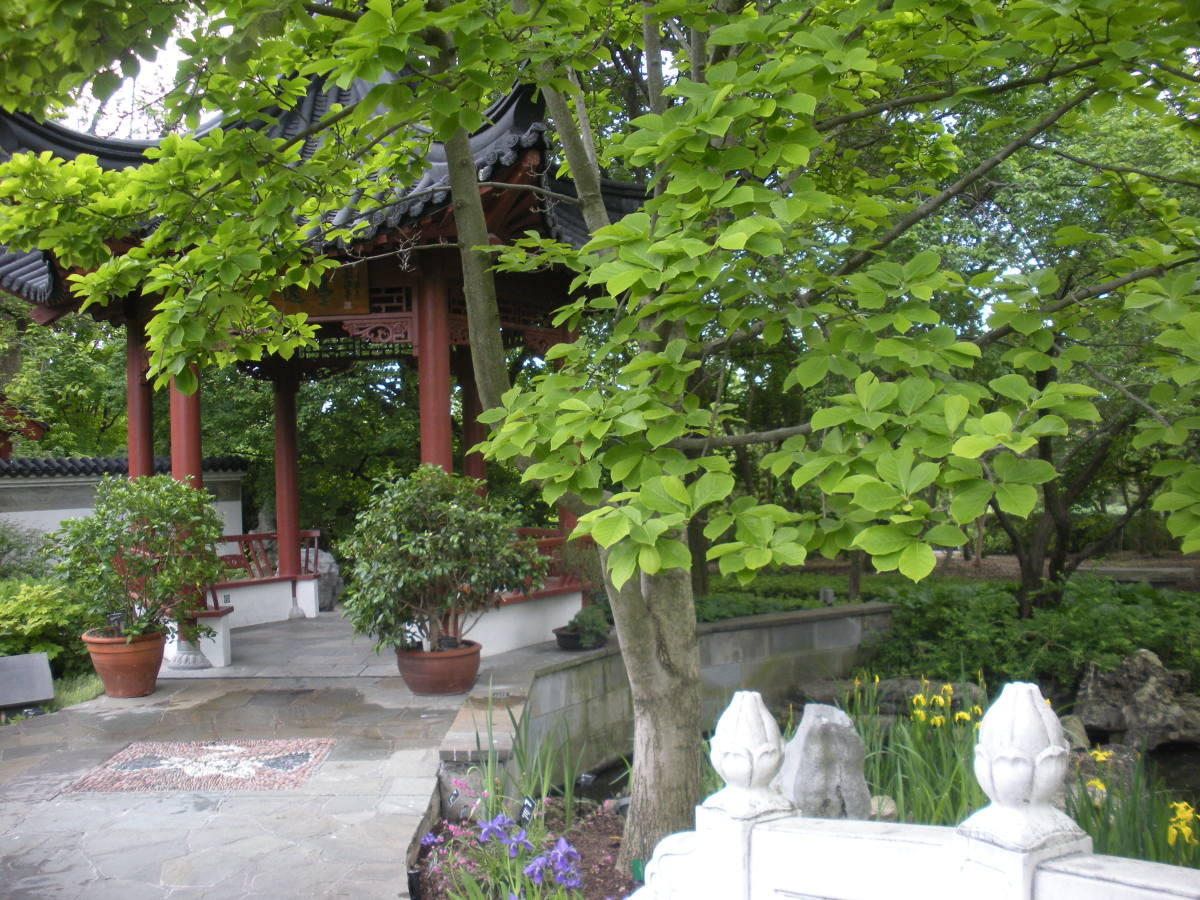 Photo 3 - Showing how you can decorate an entrance to a garden with potted plants.  A Chinese Garden.