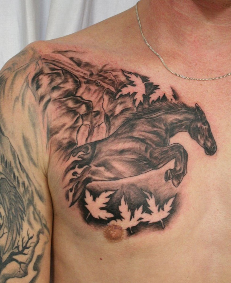 Stallion and horse tattoos hubpages for Horse jumping tattoos