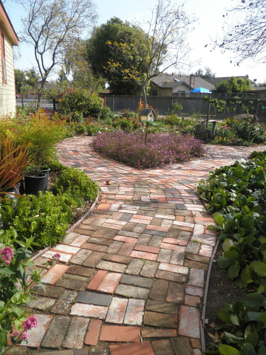 This beautiful path at Shinn Park in Fremont, Ca, was made from recycled bricks. Lovely colors mixed together make a stunning path. Great use of sustainable landscaping materials.