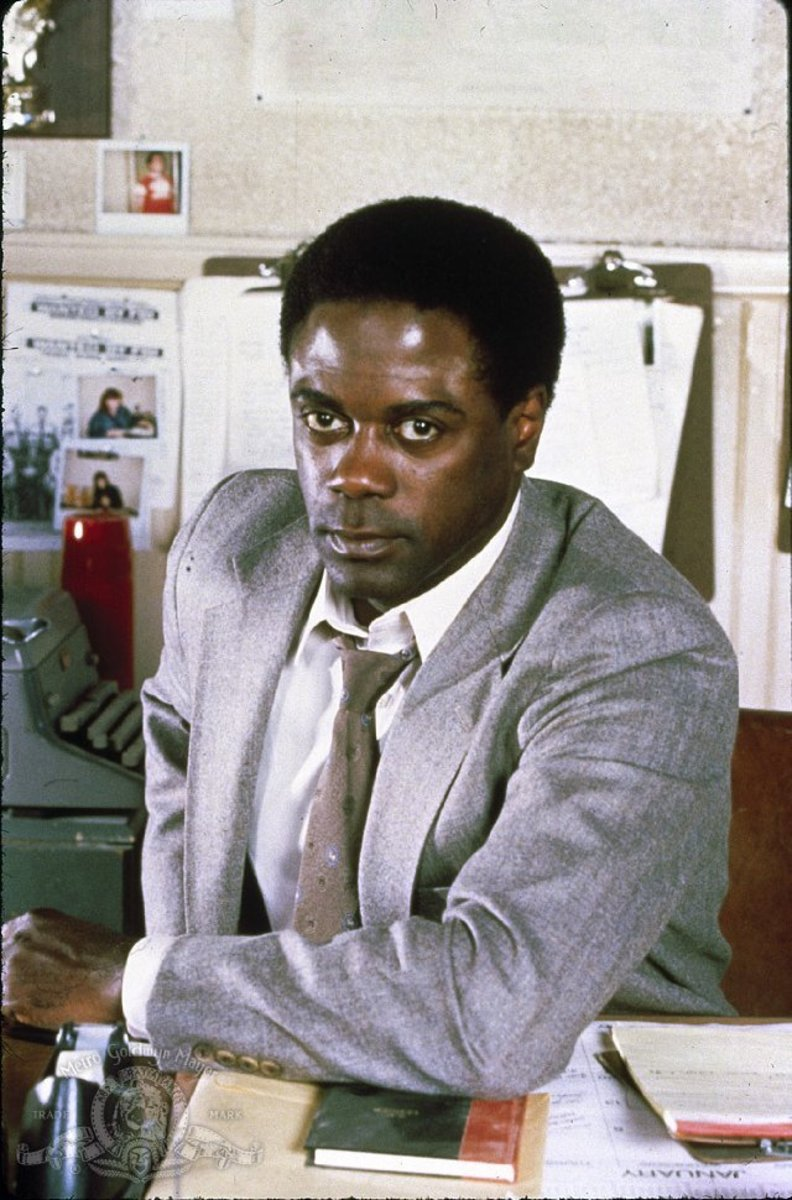 in the heat of the night virgil tibbs essay An excellent sidney poitier performance, and an outstanding one by rod steiger, overcome some noteworthy flaws to make in the heat of the night an absorbing.
