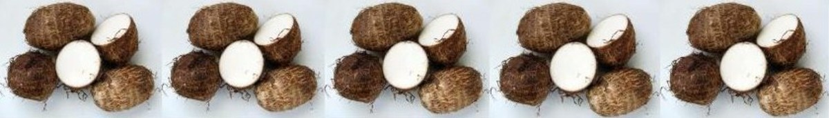 what-is-taro-otherwise-known-as-coco-yam-or-cocoyam