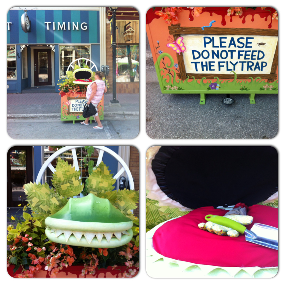 Venus FlyTrap Planter for Art Grows Here Planters Streets Alive in Orillia, Ontario