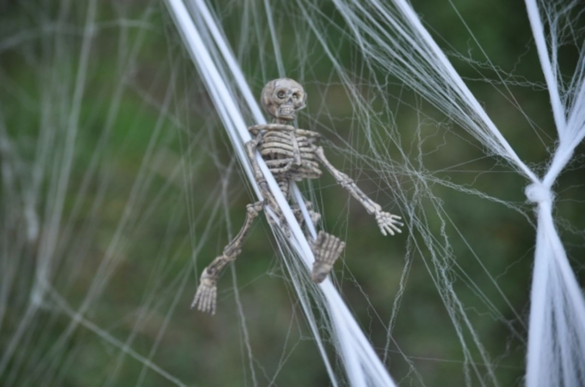 I love the details like this little teeny skeleton placed in spider webbing