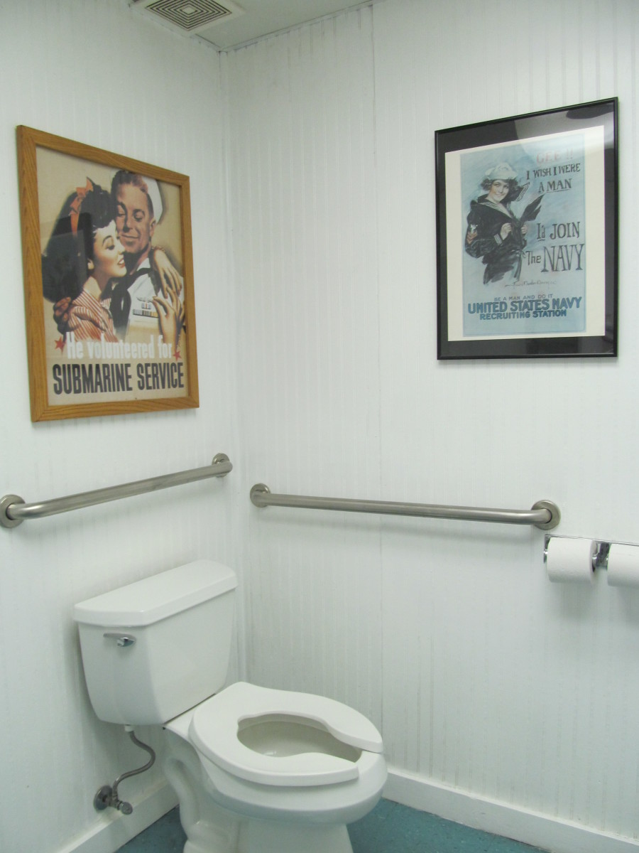 Bars placed for use by the handicapped and elderly can help a person who is needing to be more comfortable in pooping