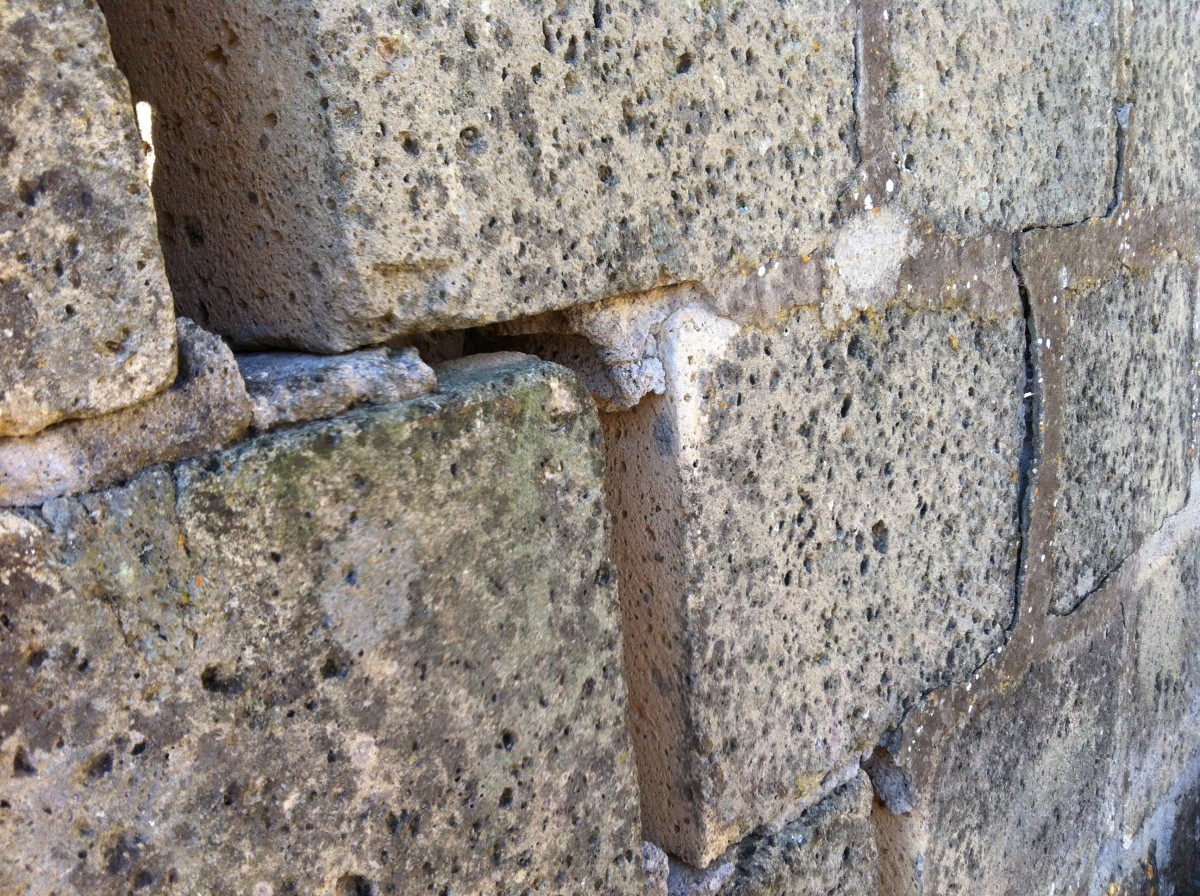 Seriously damaged out-house walls caused by to fig root damage