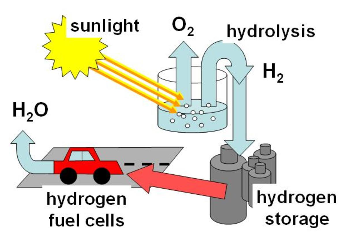 Cycle Of Carbon Nitrogen Oxygen And Hydrogen Hubpages