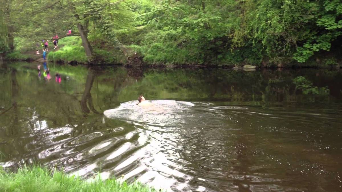 The River Nidd at Knaresborough - Bond actor Daniel Craig lives in the area