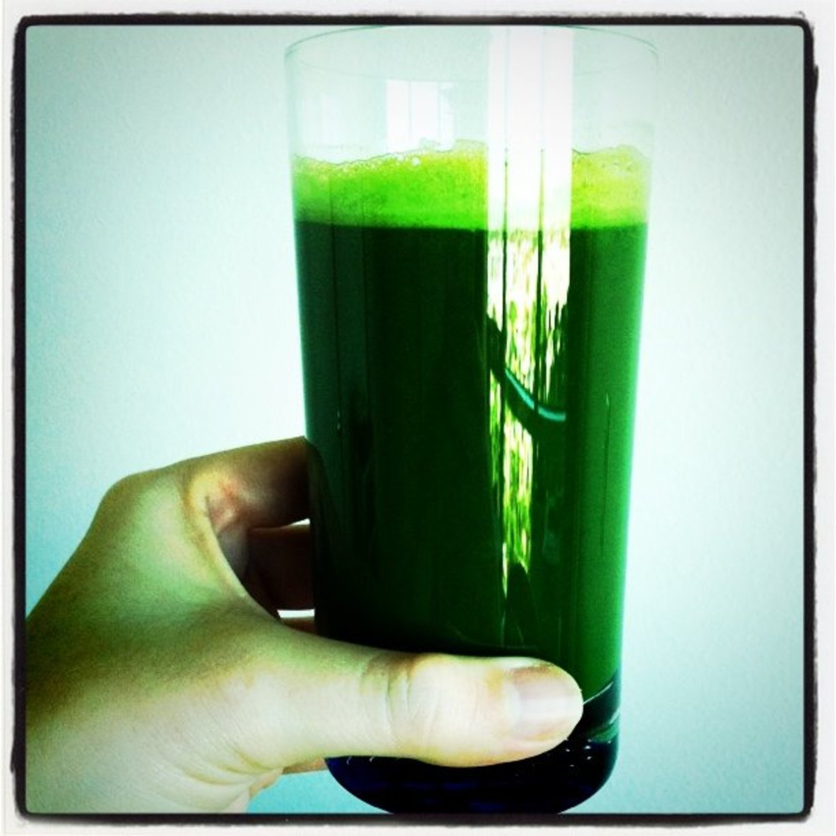 This is about 4 servings of wheat grass juice shot.