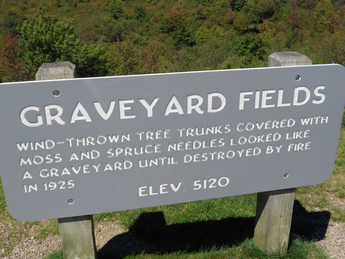 Graveyard Fields : Hiking The Blue Ridge Parkway