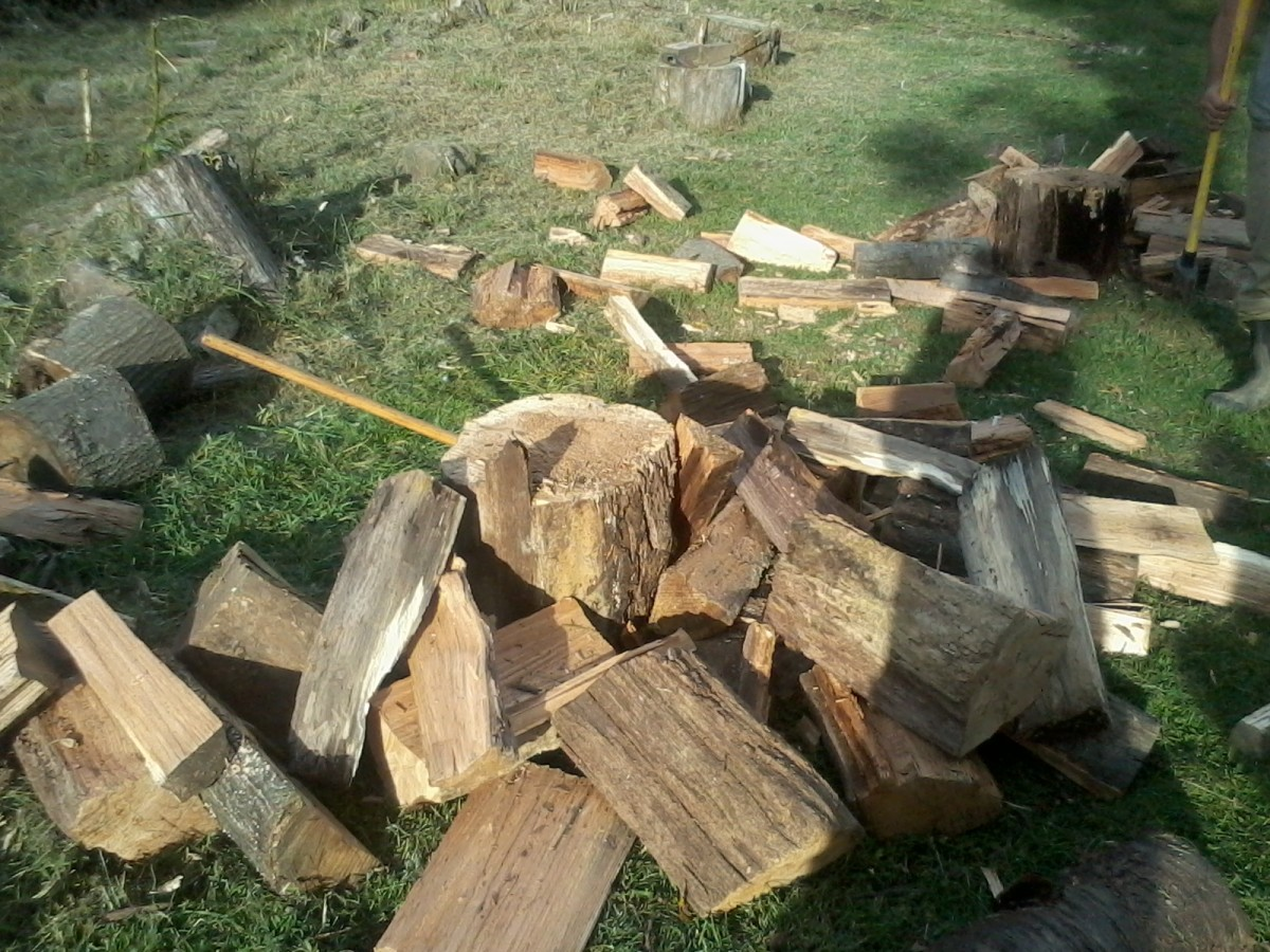 Health Benefits of Chopping Firewood