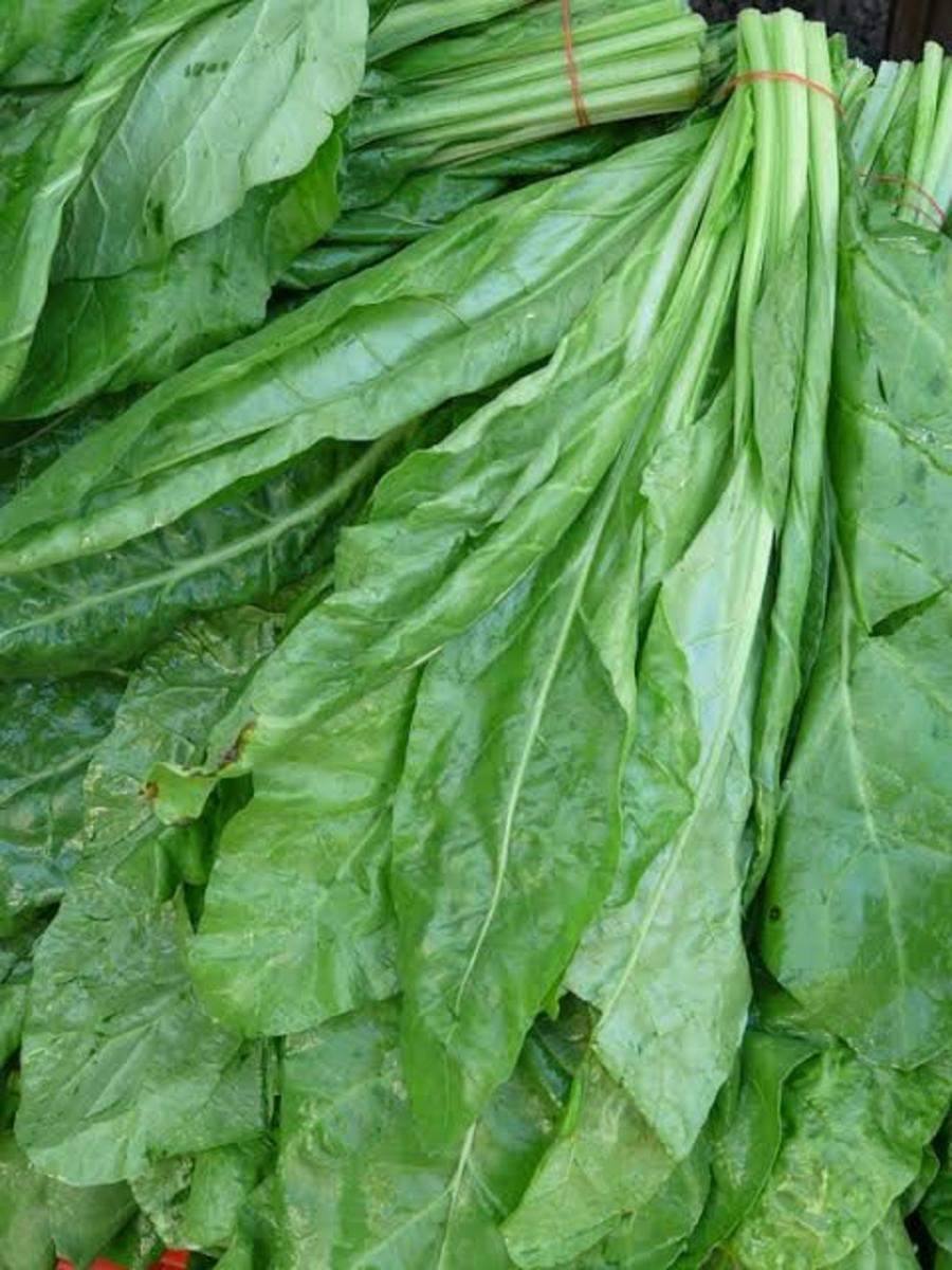 Spinach—A rich source of Iron