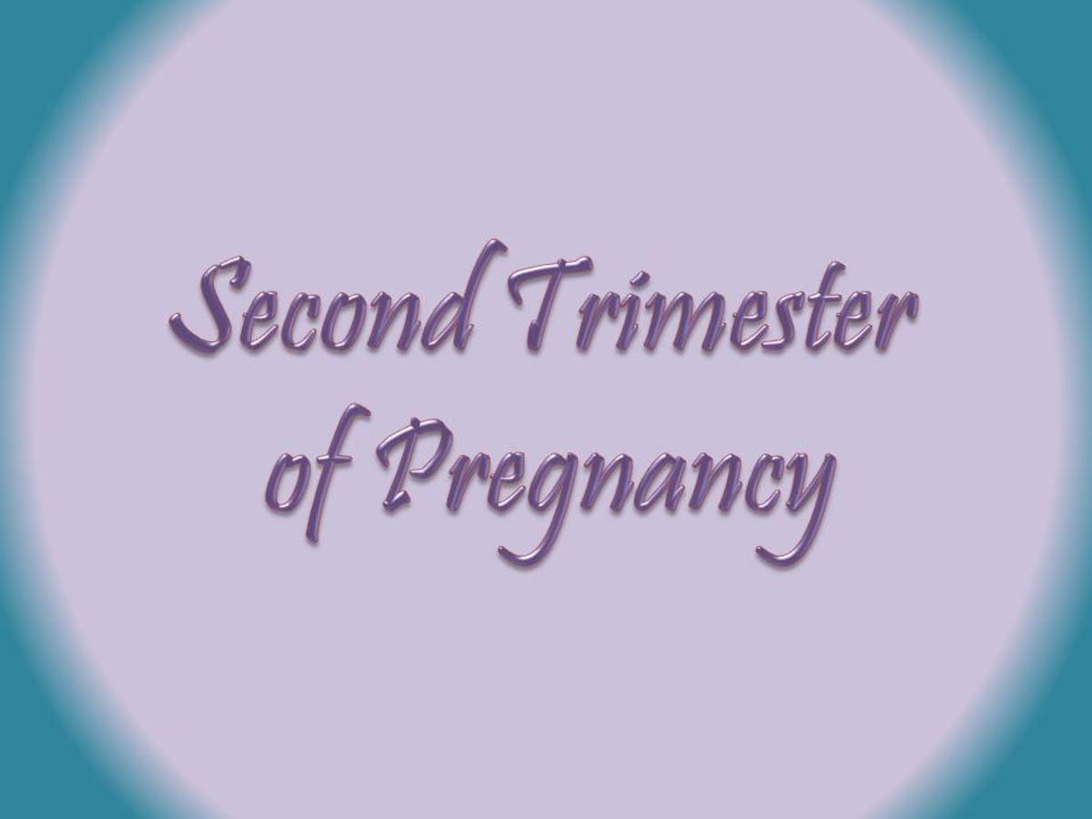 Welcome to the Second Trimester of Pregnancy!