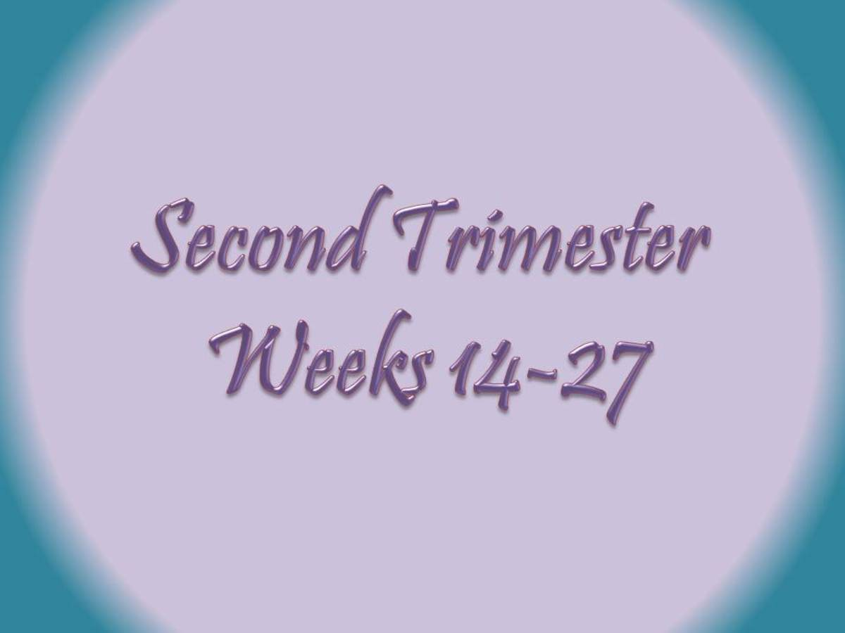 The second trimester of pregnancy is from weeks 14-27.