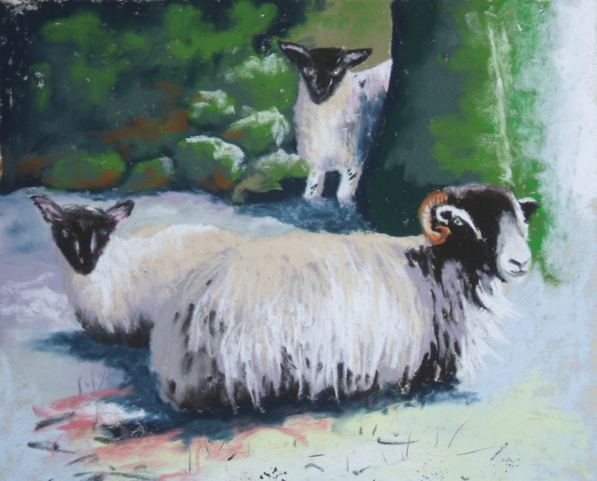Sheltering Sheep.  Unison Pastels on Fisher 400 paper