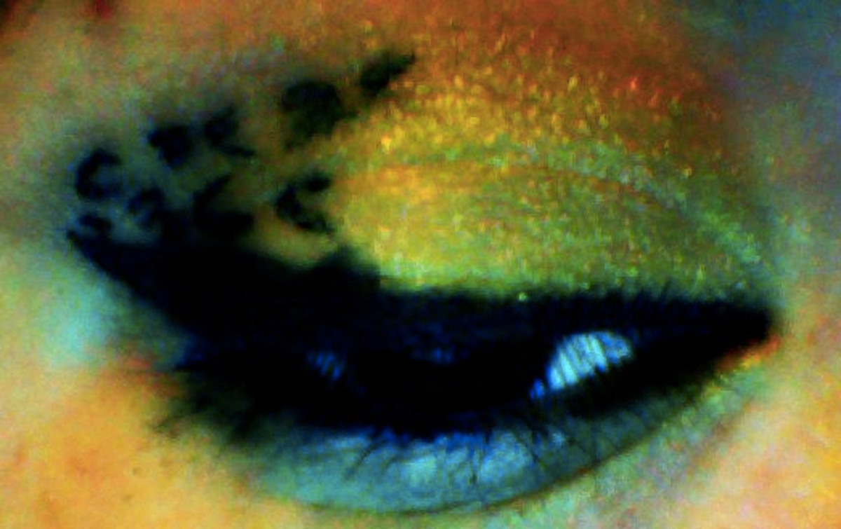 cheetah eyeshadow