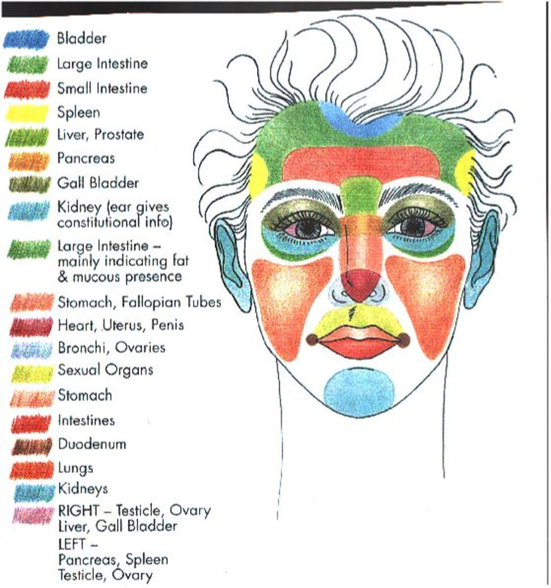 Roles of body and acne spots