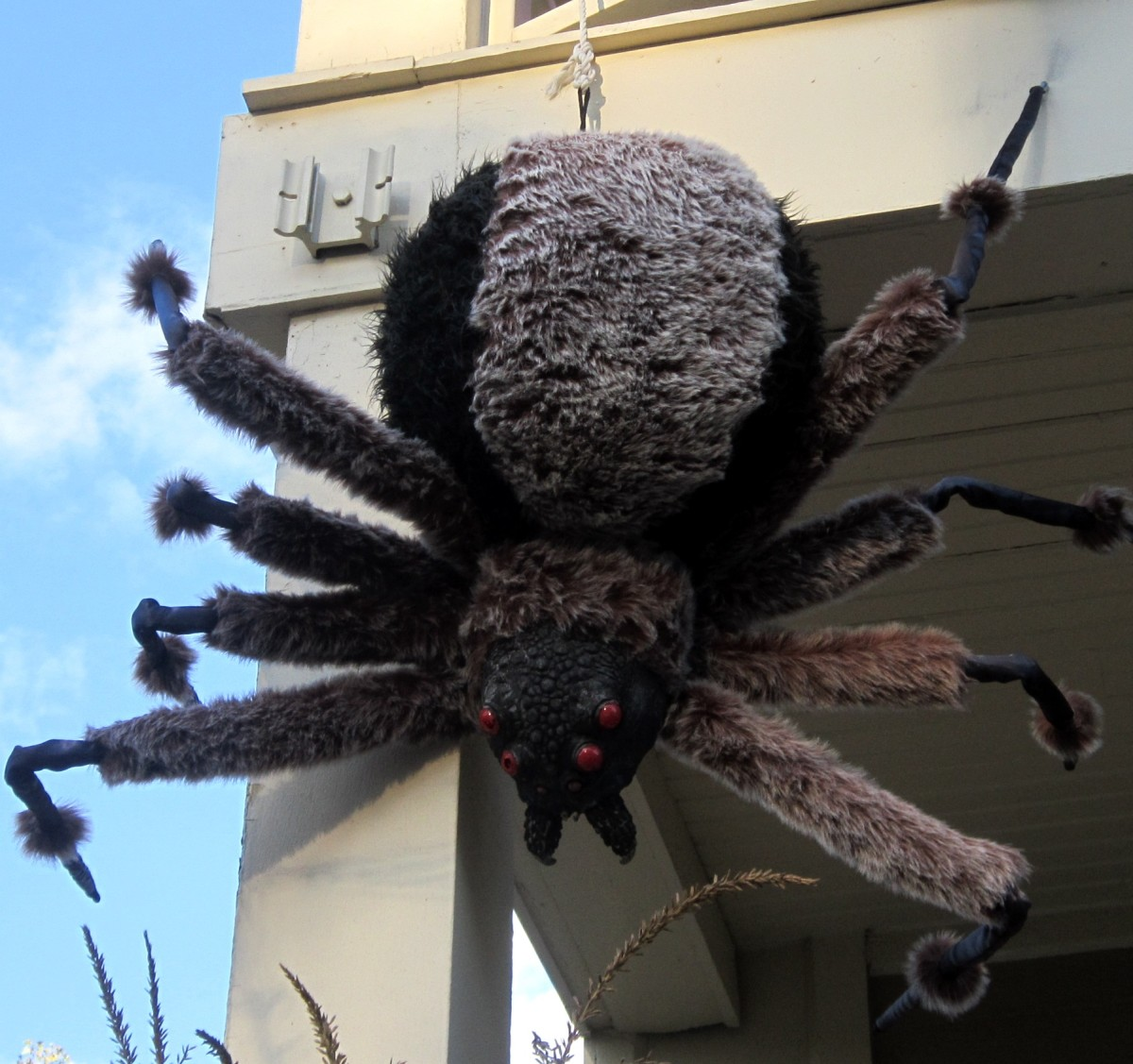 Scary or sweet? This giant spider decoration is big enough to terrify and fluffy enough to cuddle.