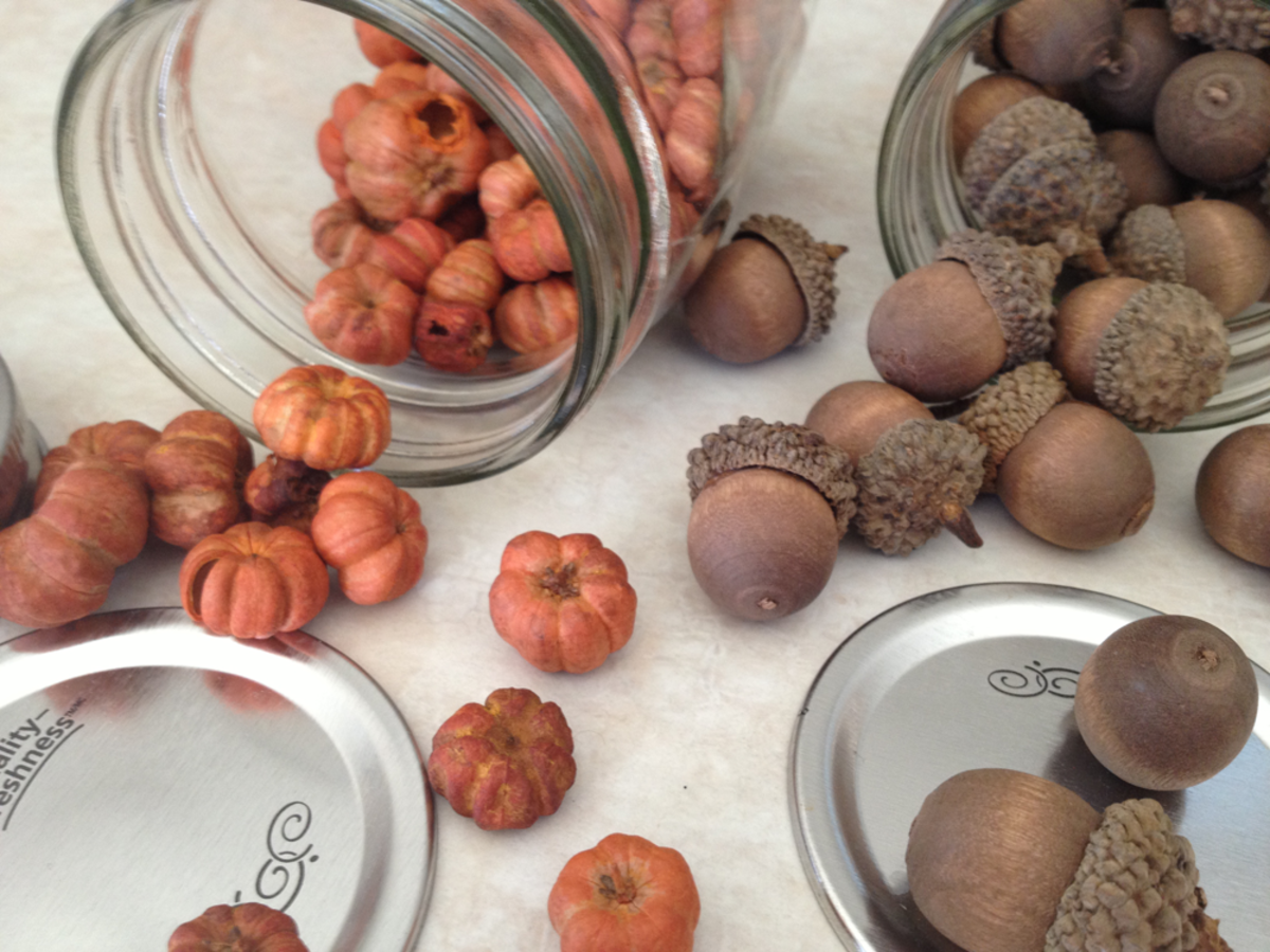Putka Pods and Acorns