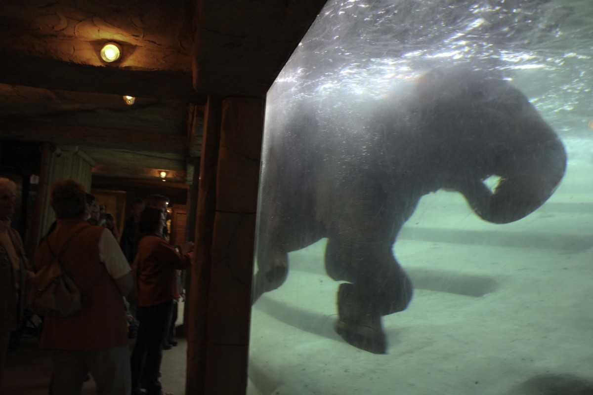 The view into the elephant's bath.