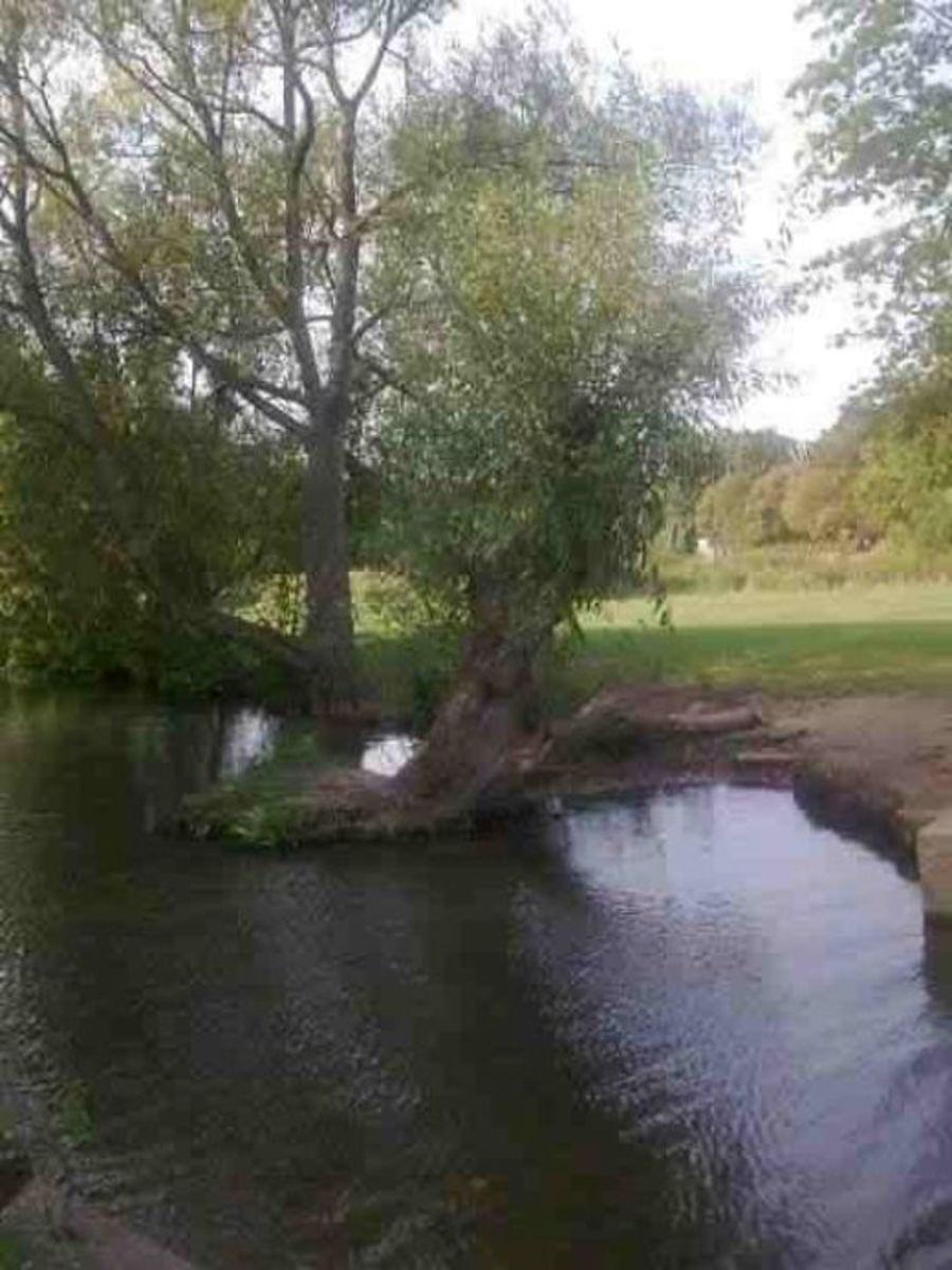 Higginson Park River Thames
