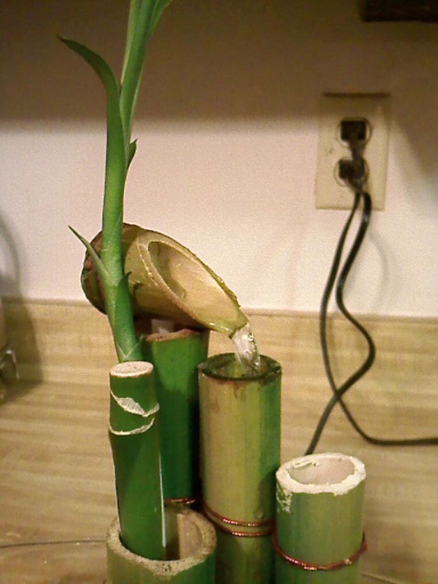 indoor-bamboo-fountain-2