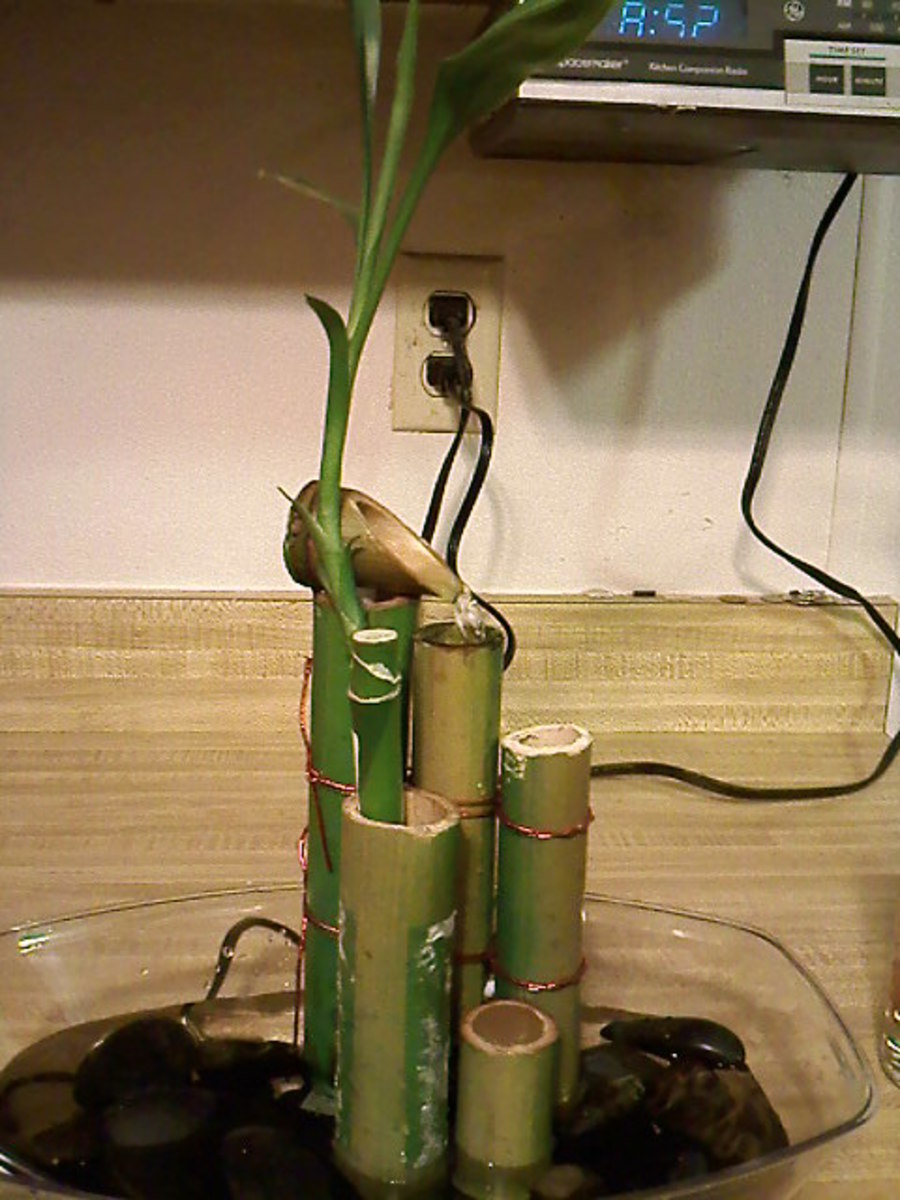 Indoor Bamboo Fountain 2