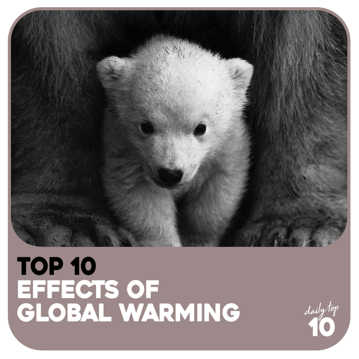 Top 10 Worst Effects of Global Warming and What We Can Do to Stop Them