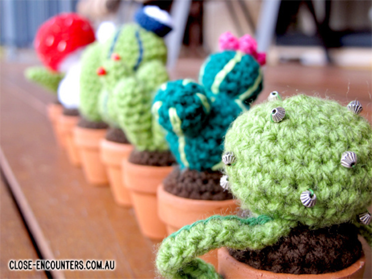 I love cacti...and at least I can't kill these :-)