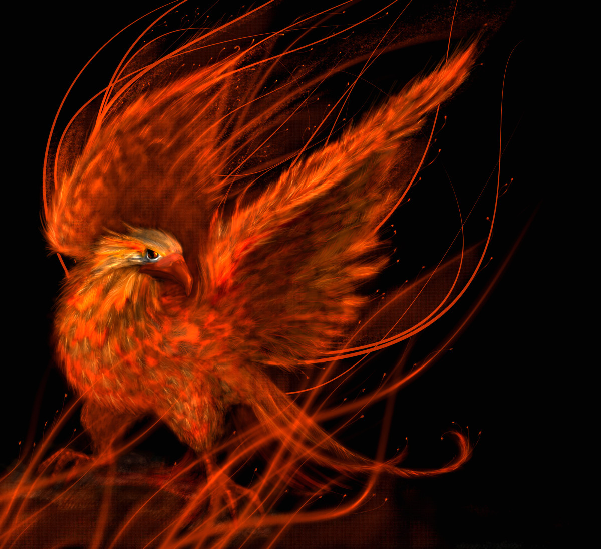 Persian Mythology 's version of the phoenix - the Huma