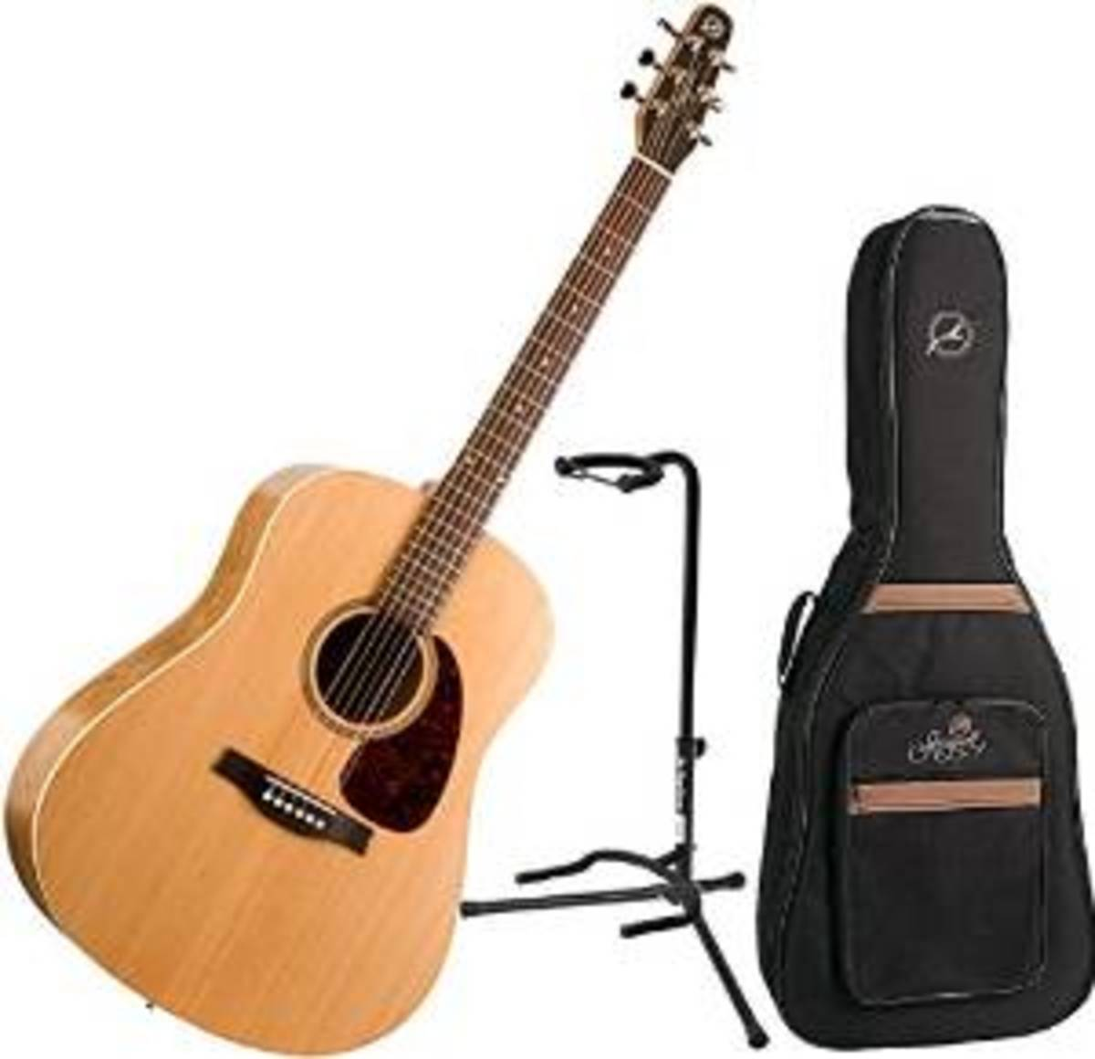 Same Price as a Guitar: for Bundle Deal You also Get a Gig Bag and a Stand