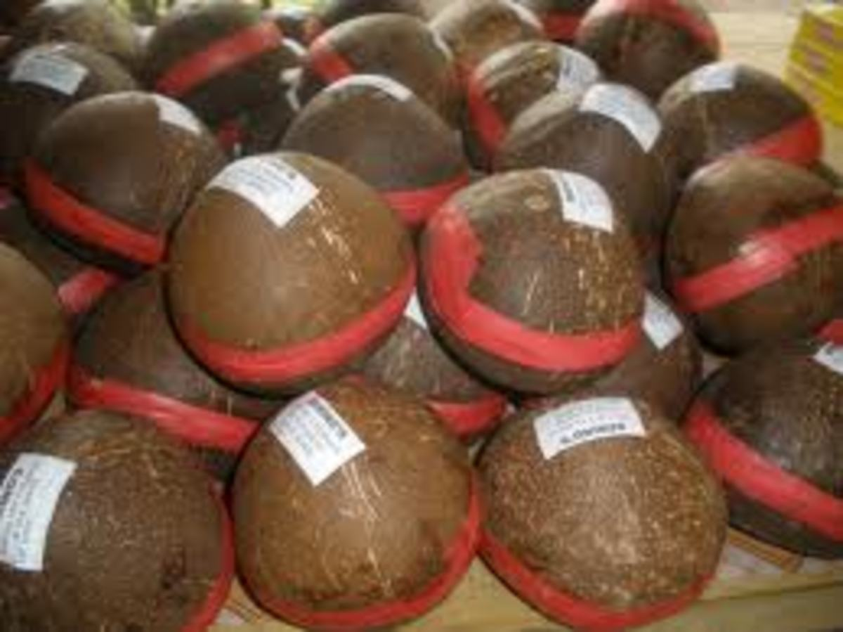 Coconut shell is used to contain kalamay, a special delicacy of Bohol, Philippines