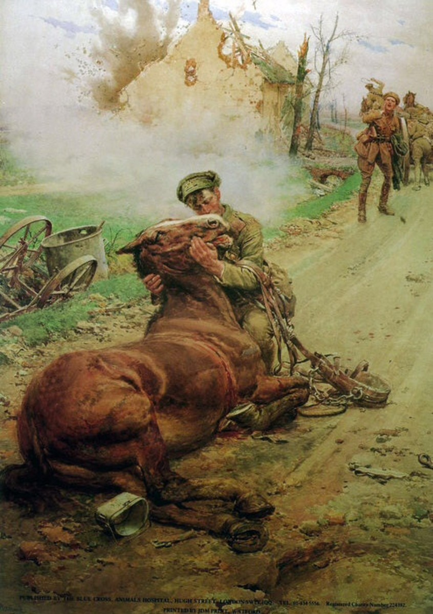 "Sad painting titled ""Goodbye old man"" one of thousands of horses that died on the battlefields"