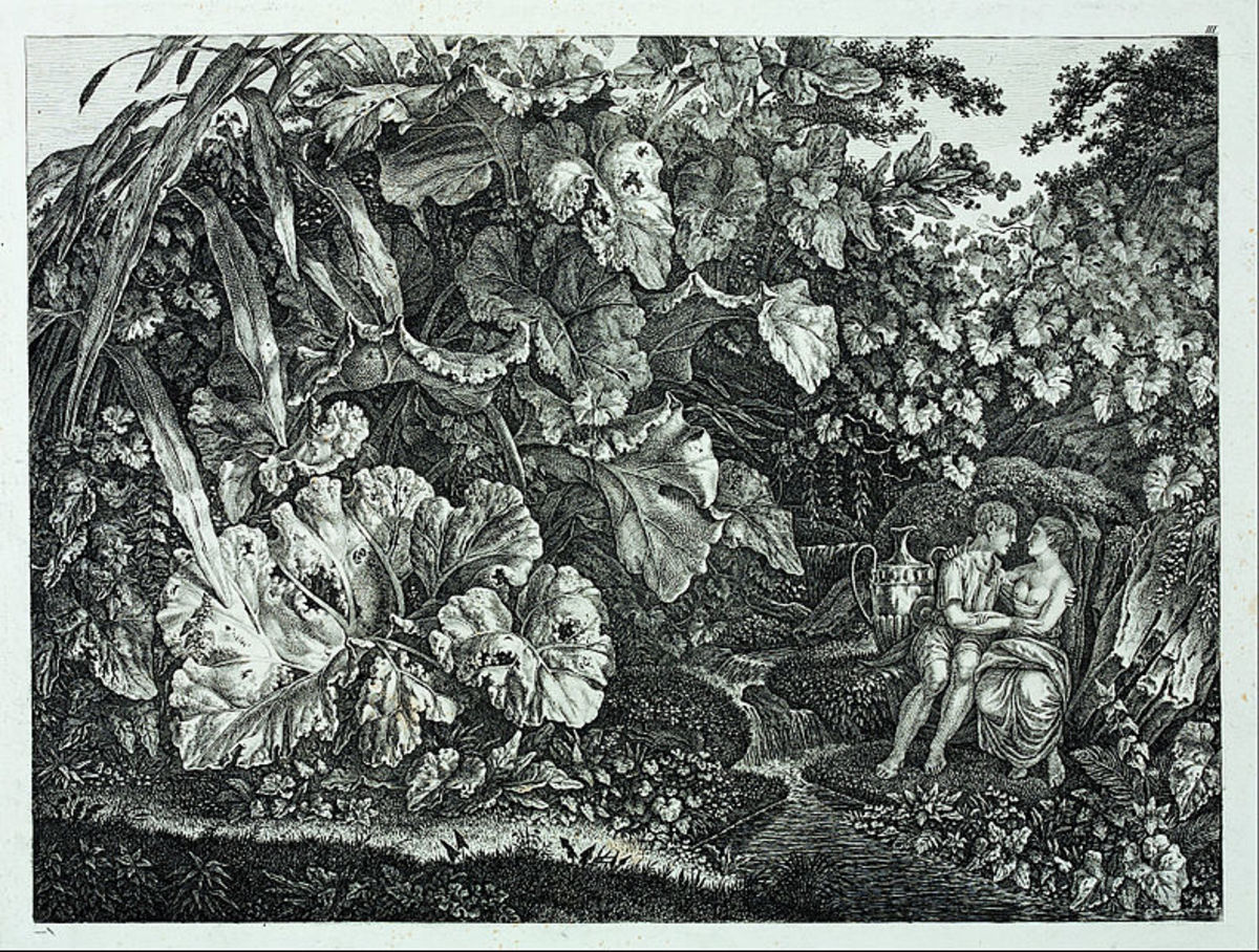 Lovers in a Grotto, Surrounded by Plants and Herb.